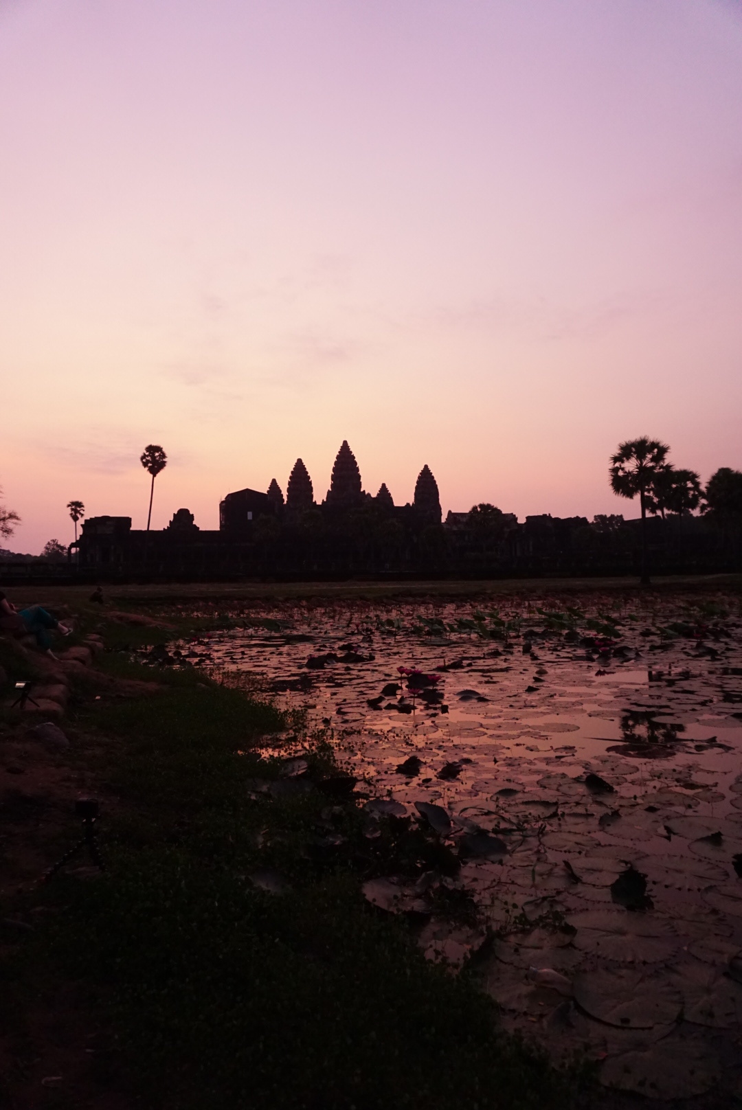 Angor Wat at sunrise #nofliter