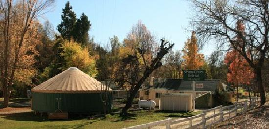 The infamous yurt at Seven Circles.