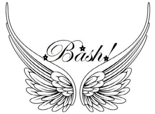 bash logo.jpg