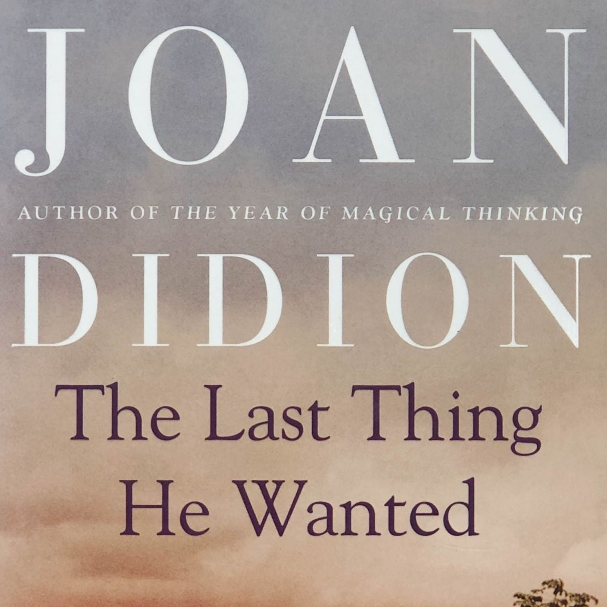 The-Last-Thing-He-Wanted-by-Joan-Didion.jpg