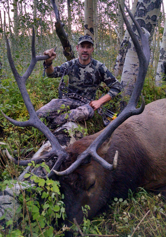 Bill's backcountry bull elk taken with an Iron Will Outfitters v100 broadhead.