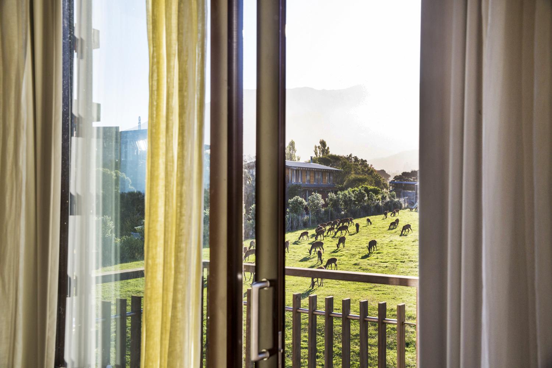 A private balcony overlooks the Hapuku deer breeding farm and Lodge grounds.