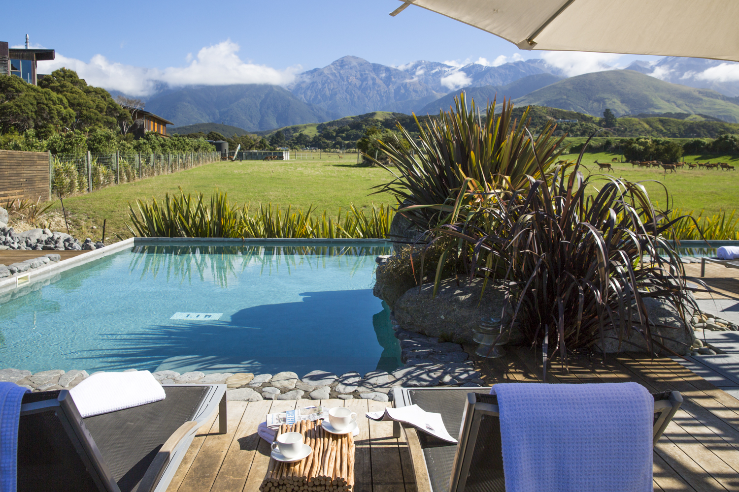 Manakau, the highest peak in the Kaikoura Seaward range is 2,610 meters and only 12km from the coast.