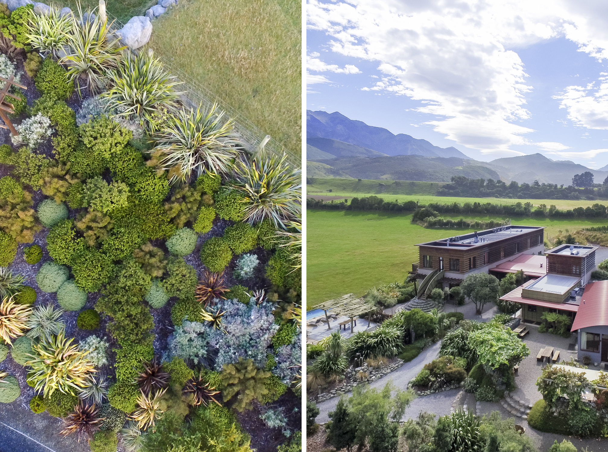 Thousands of NZ native plants and trees have planted throughout the property.