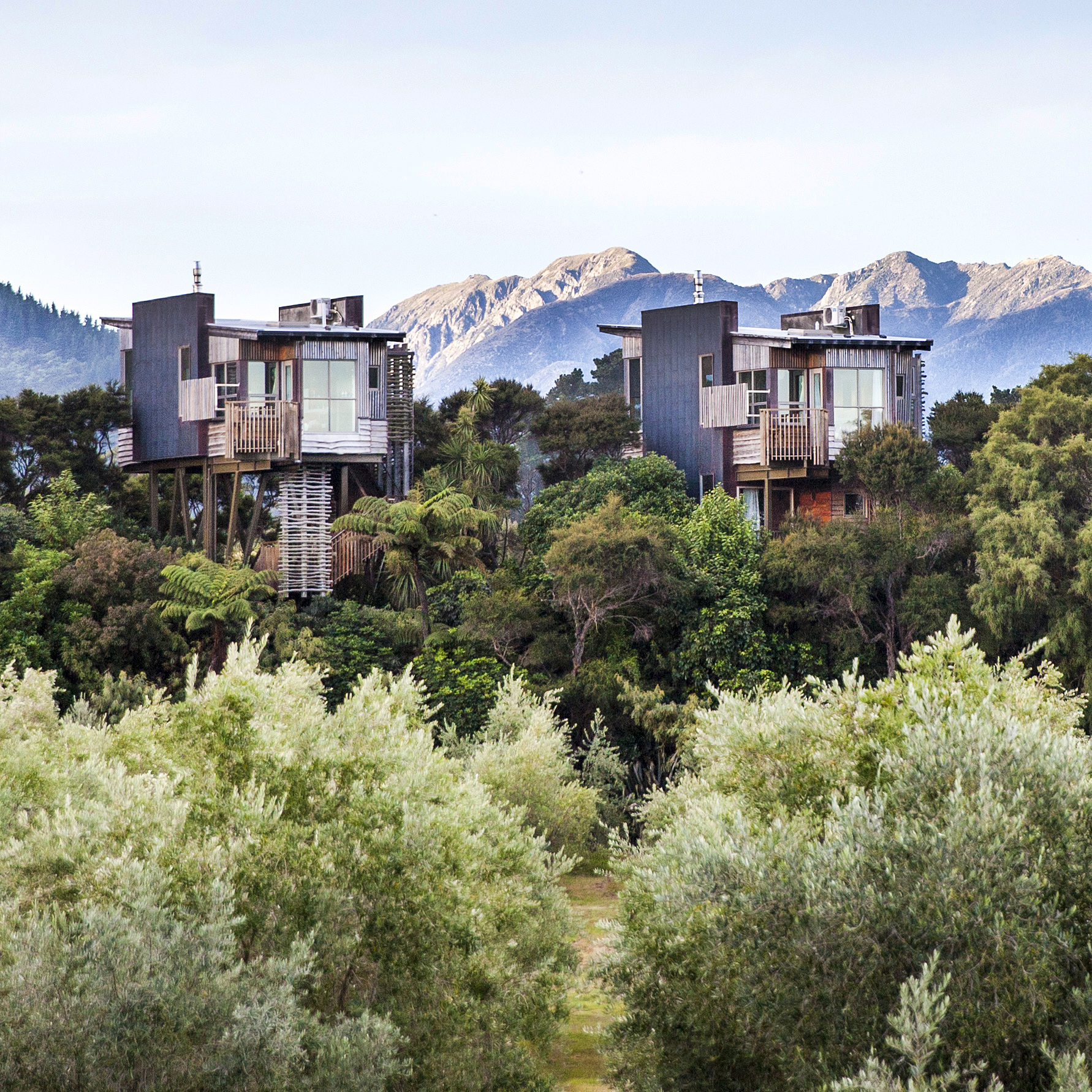 TREE HOUSES - Luxury, out on a limb...