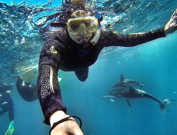 Liz swimming with dolphins