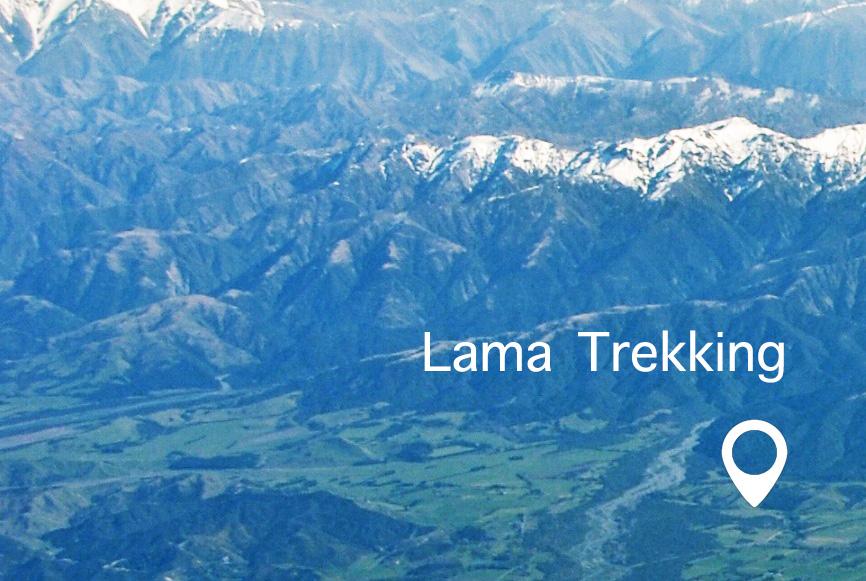 Lama-Trekking-Kaikoura
