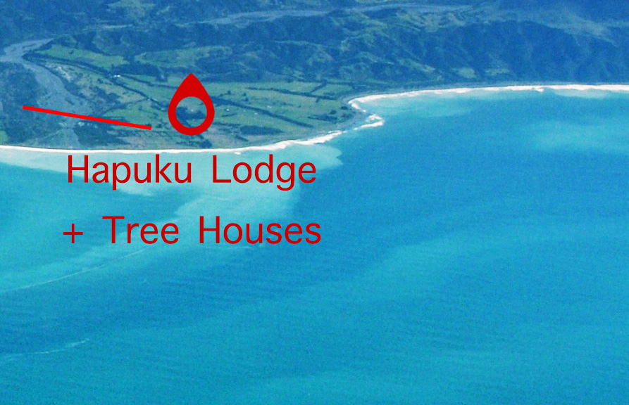 Hapuku-Lodge-Treehouses