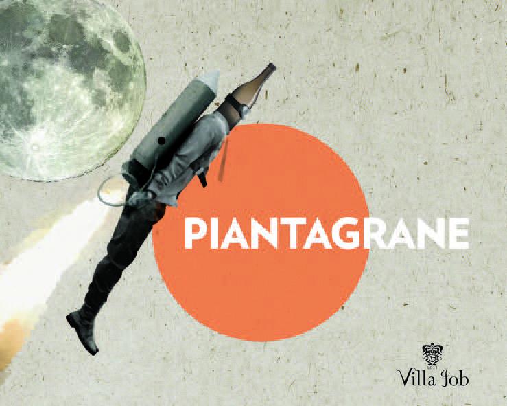 VJ_PG_Piantagrane.jpg