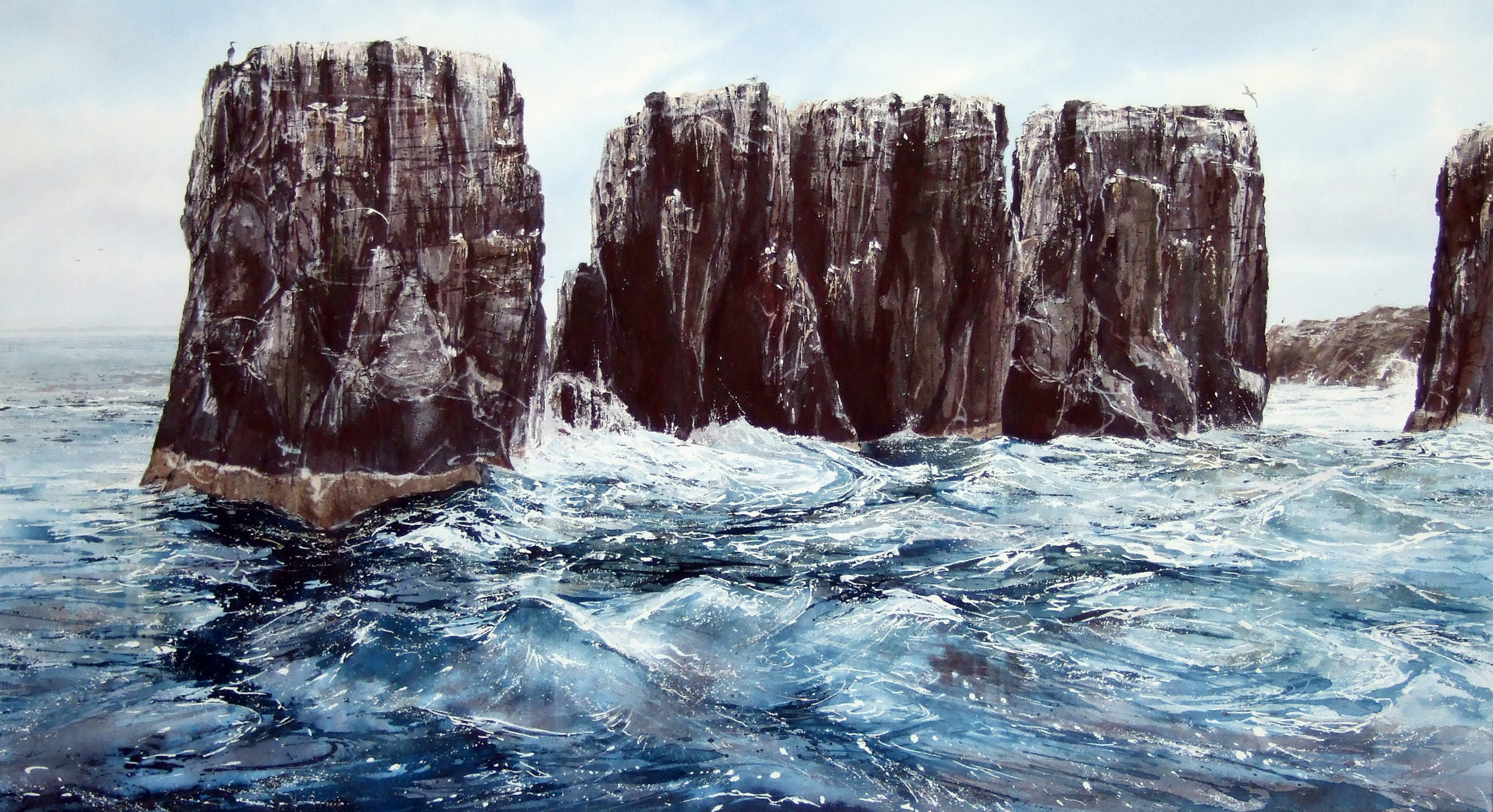 North Easterly; Farne Islands