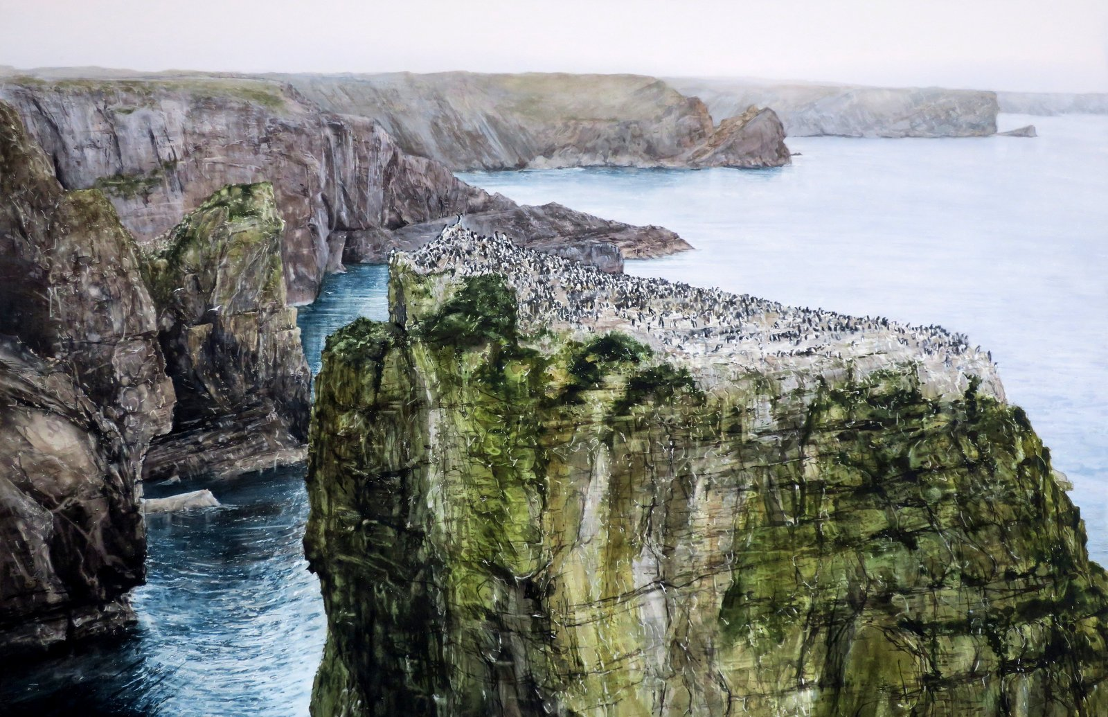 Guillemots, Sea beet and Tree Mallow     watercolour   H96cm x W136cm