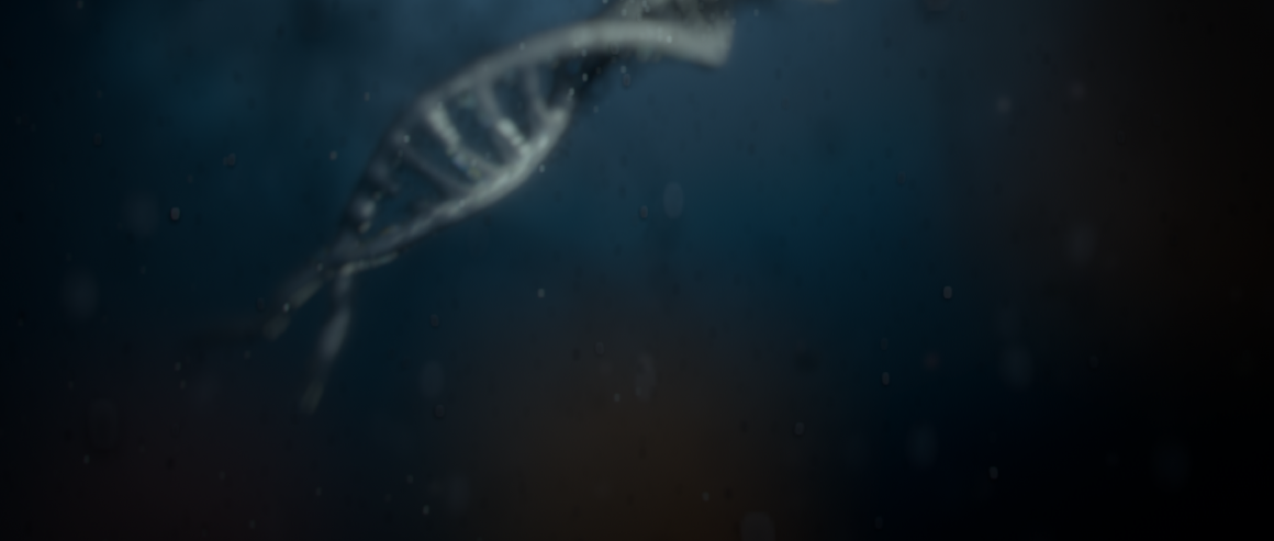 DNA_infection003.png