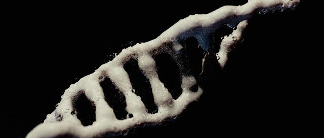 DNA.05.jpg