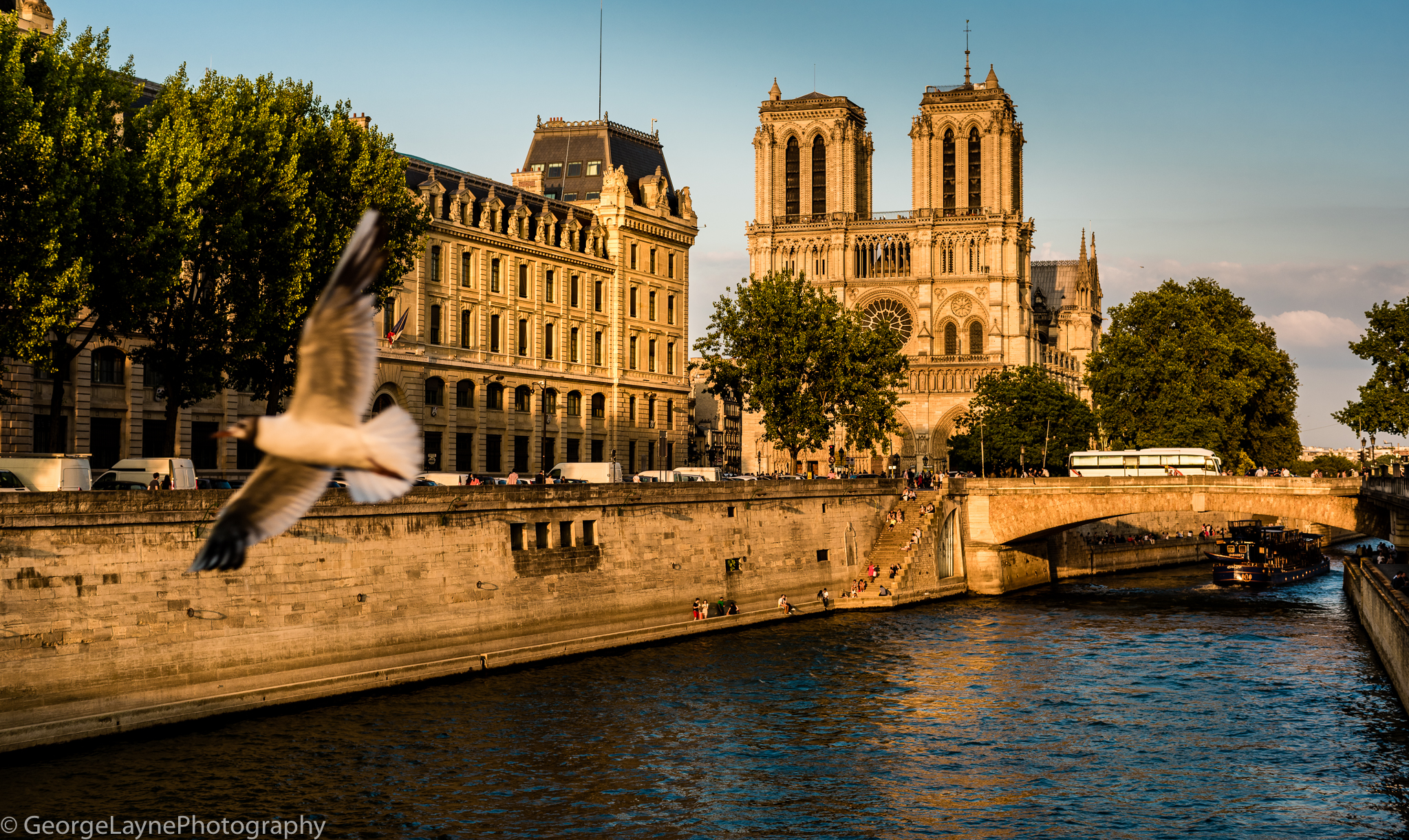 My first sight of Notre-Dame
