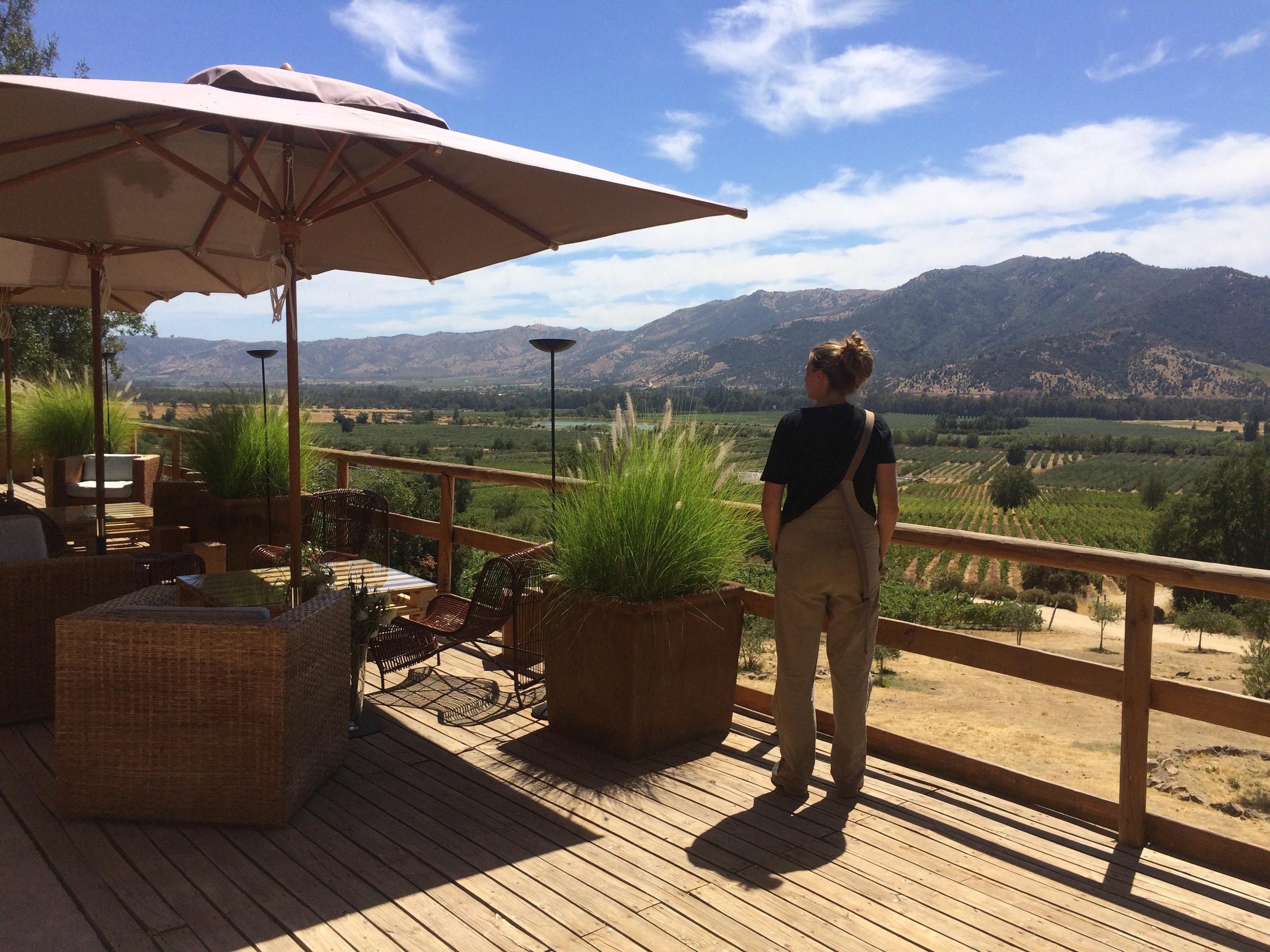 Uitzicht van het terras van de villa van Lurton.