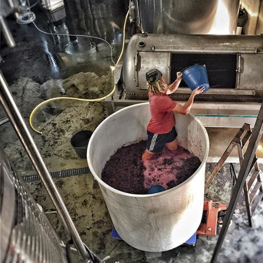 After 5 days we pressed the destemmed grapes, and after two weeks we pressed the whole bunch