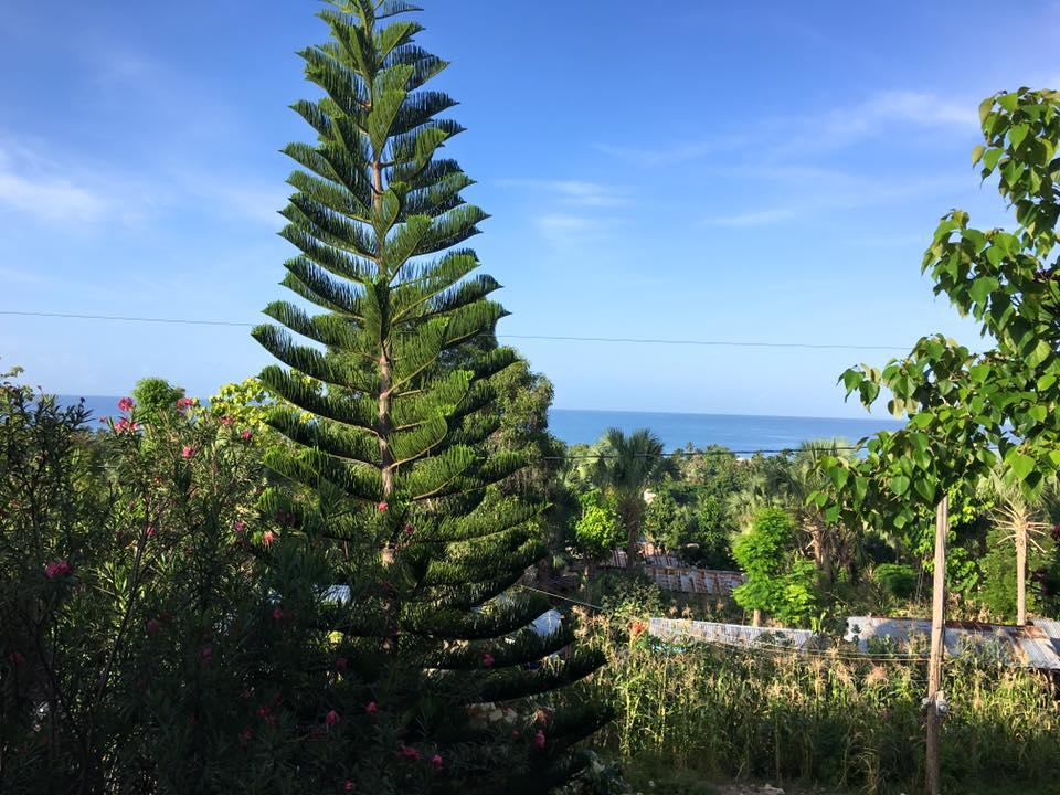 mom's short trip to Haiti 10.jpg