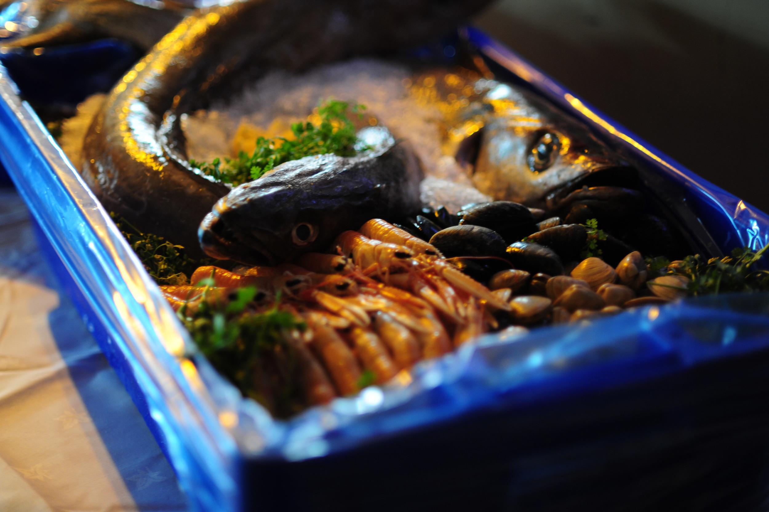 Galway Food Festival 2015 All-150.jpg