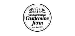 castlemine.png