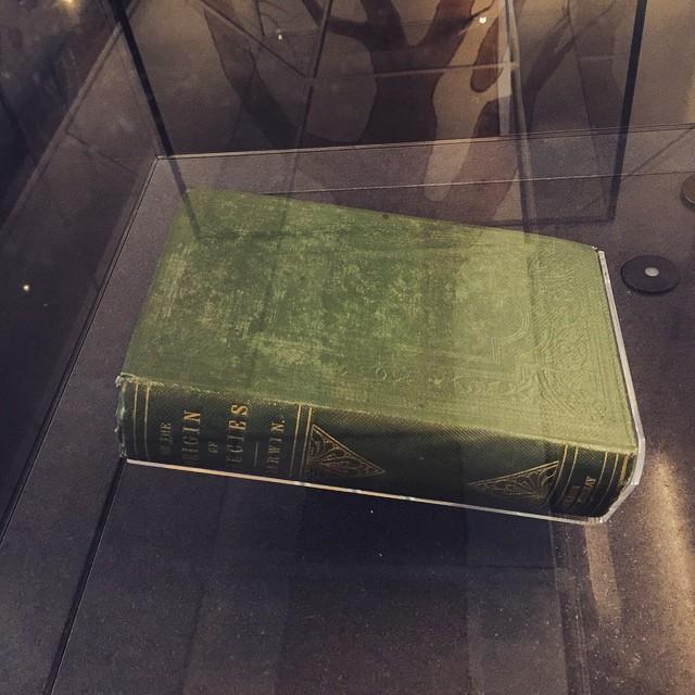 1st edition origin of the species