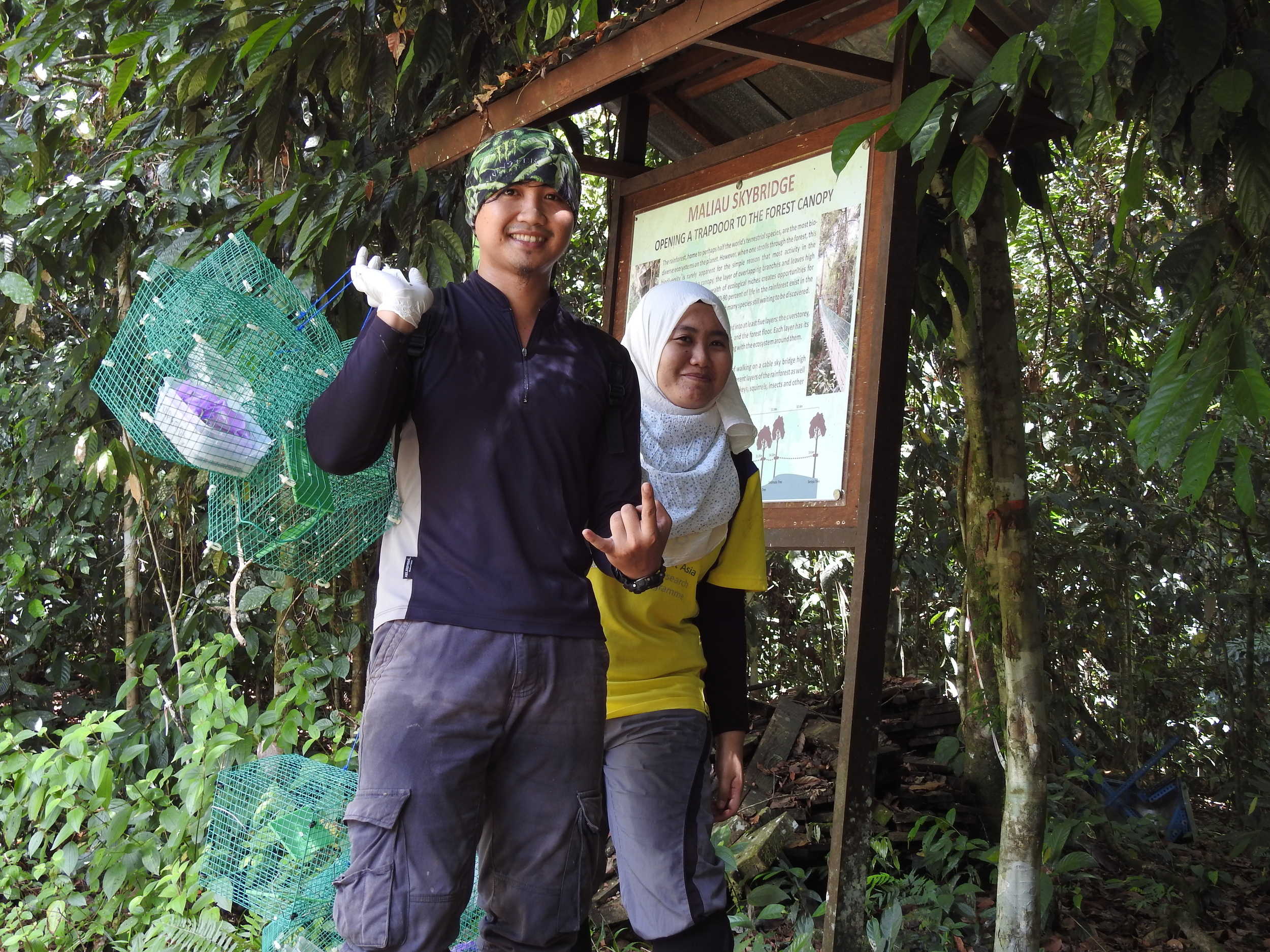 Ali and Mira collecting exclusion cages from the field