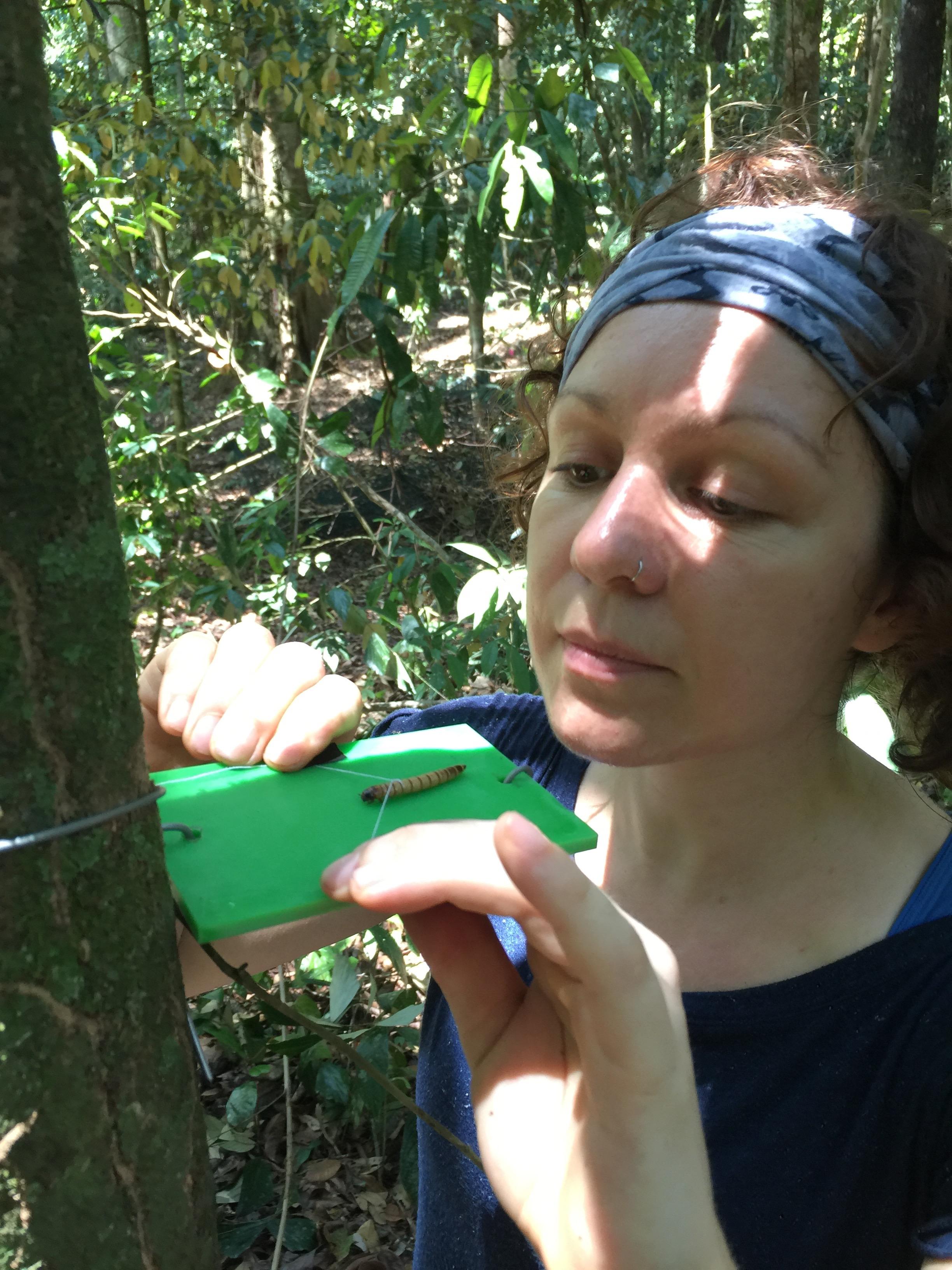 Hannah checks out a mealworm