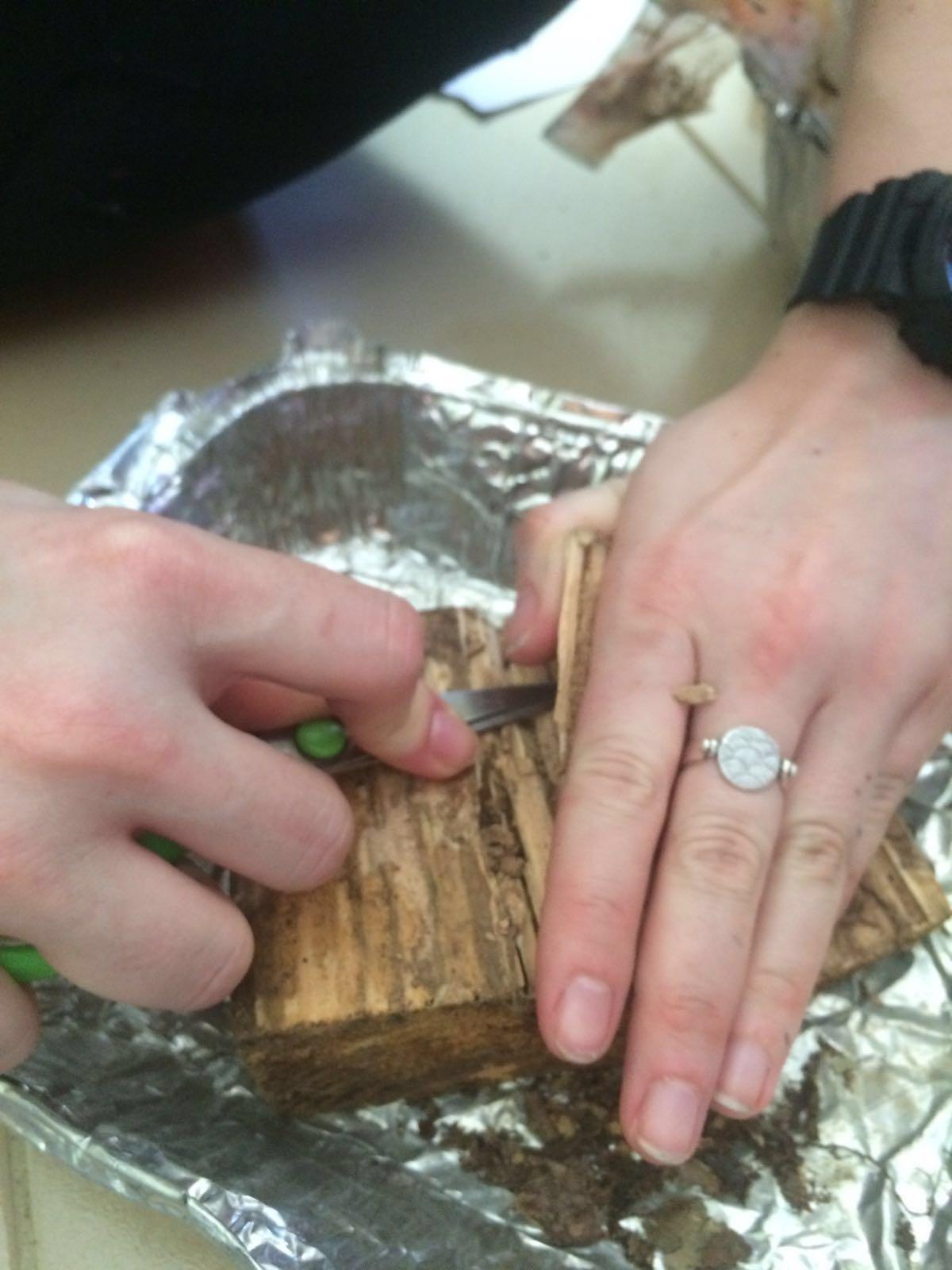 Cracking open a wood block