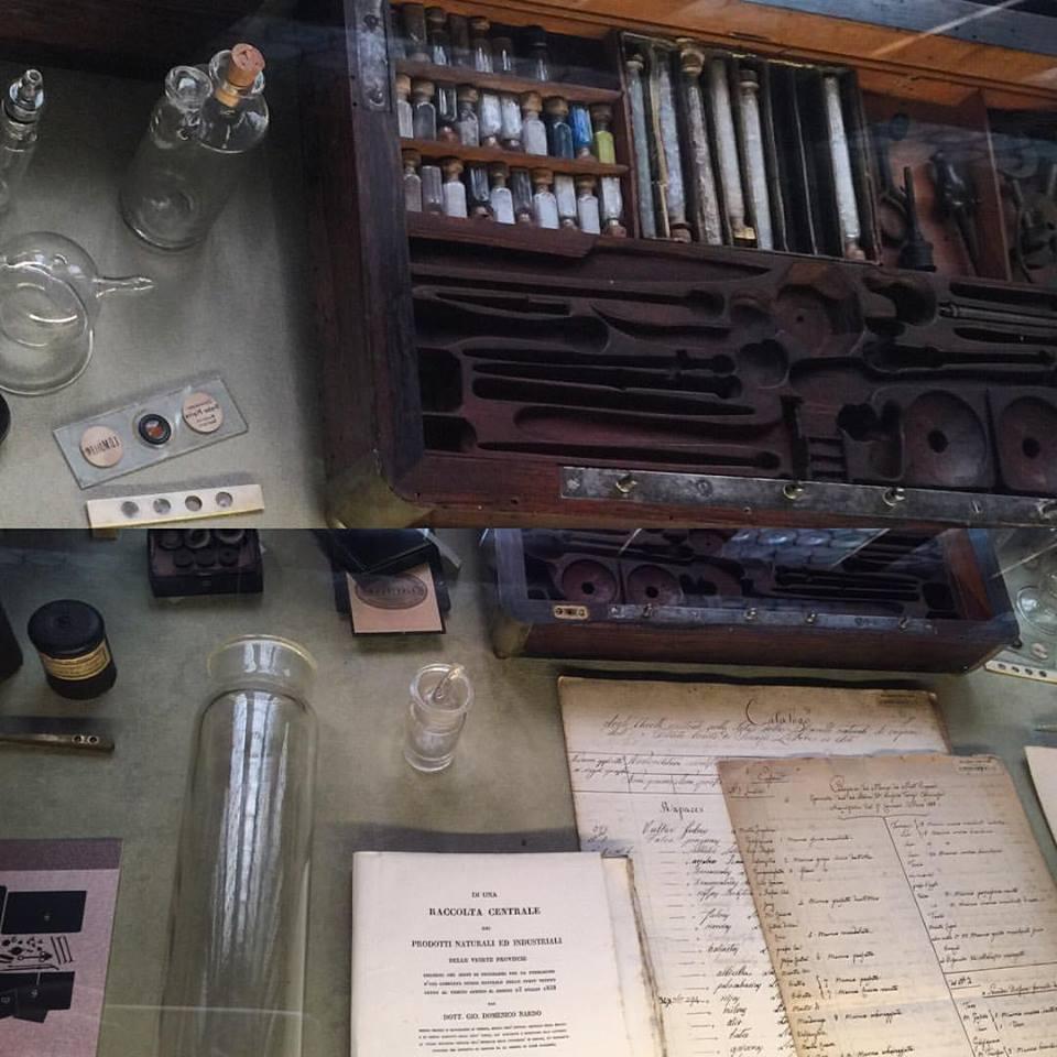 Old natural history tools
