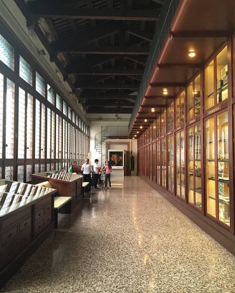 Collection hall