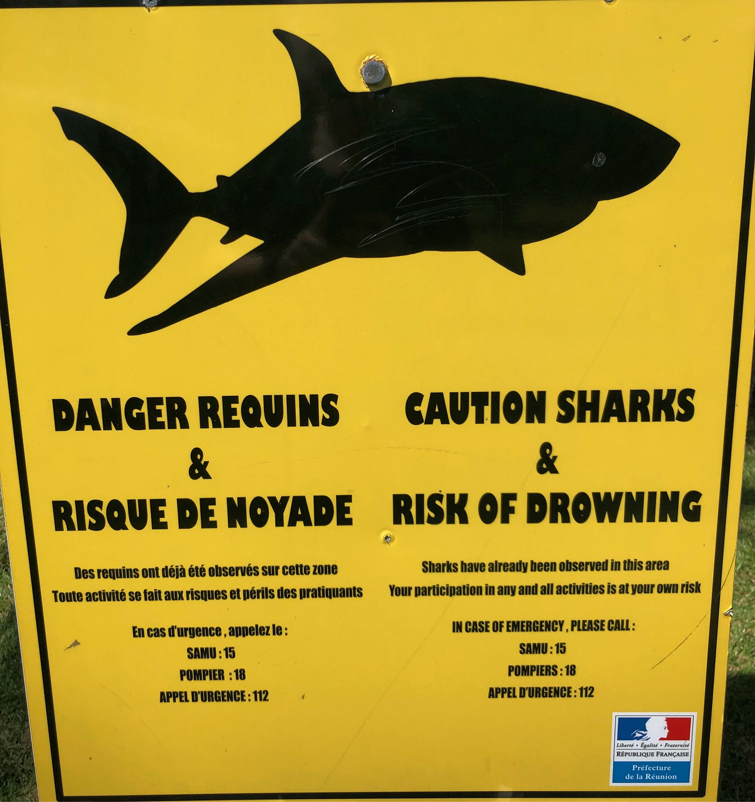 Caution - sharks!