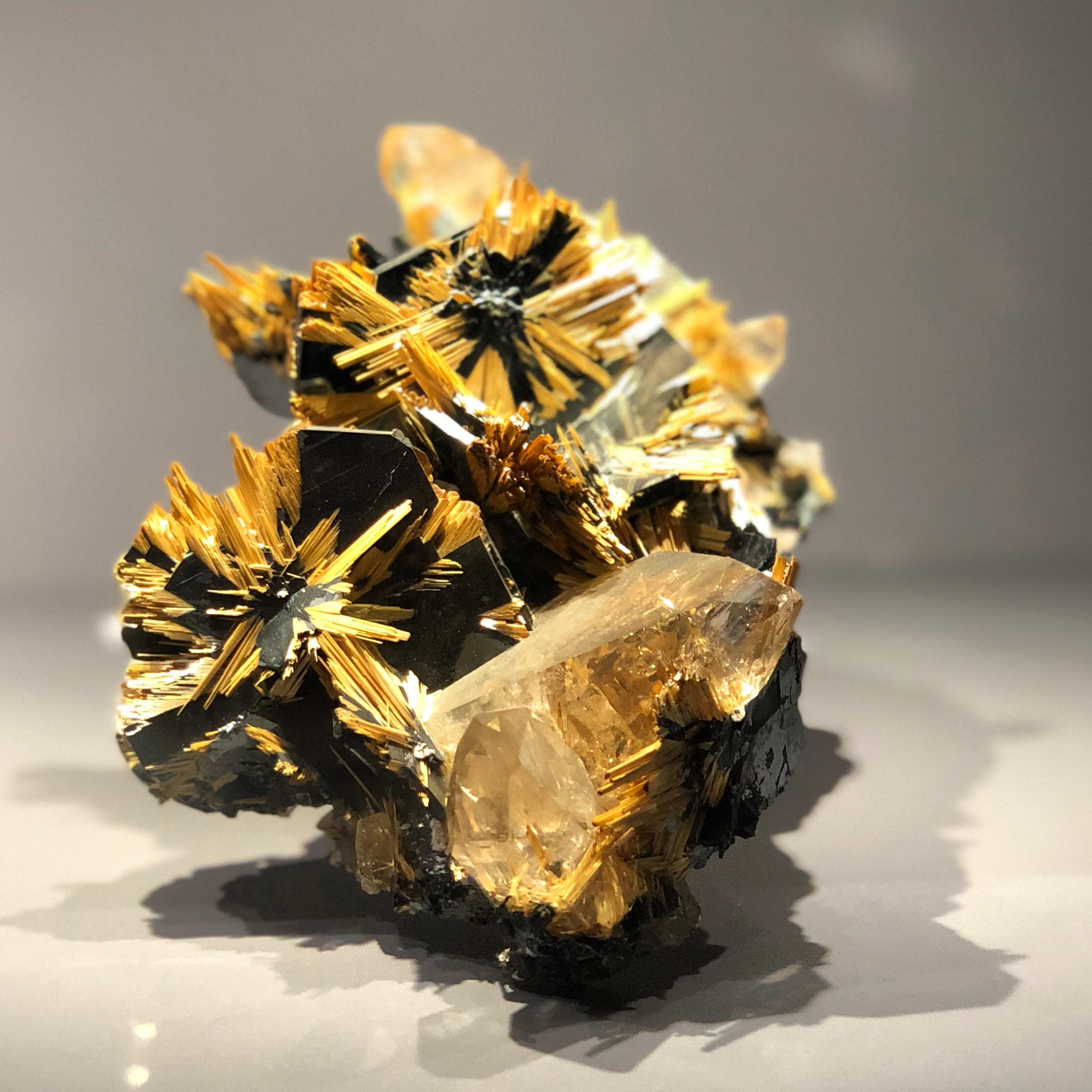 Galerie de Minéralogie et de Géologie