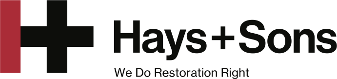 Hays_Logo_Design_File[1].png