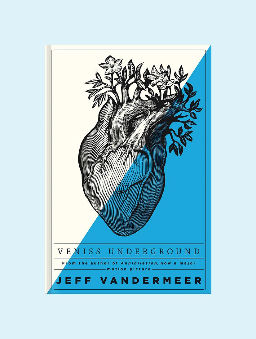 Vandermeer_VenissUnderground