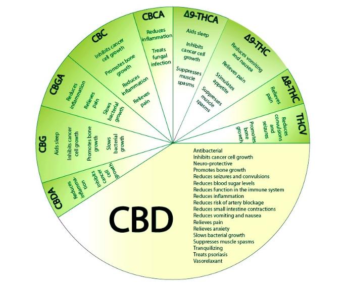 https://medium.com/cbd-origin/cbd-isolate-vs-full-spectrum-cbd-b78a6eab319c