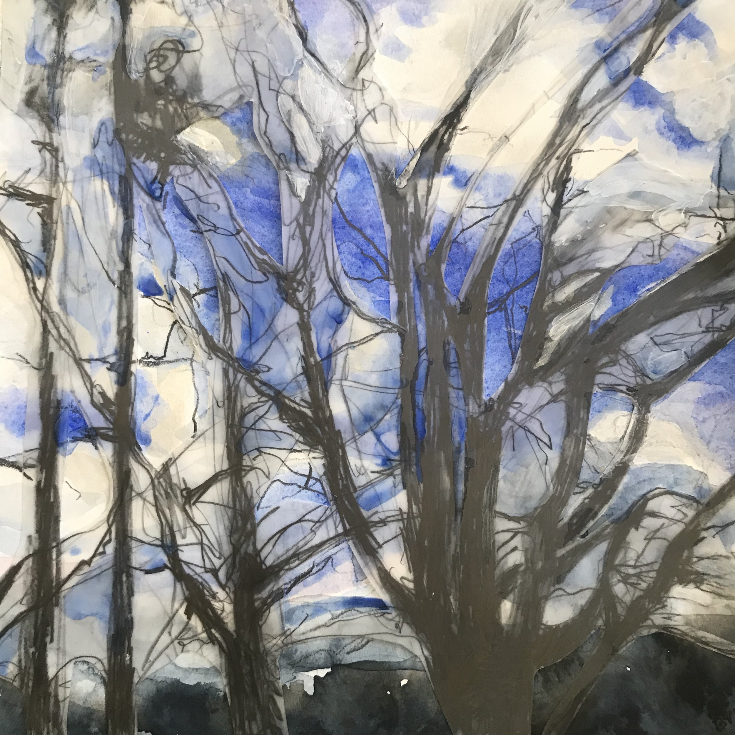 "Trees-sketch-clouds ( Autentico 2019) watercolor, graphite, collage 9"" x 9"" by beth vendryes williams"