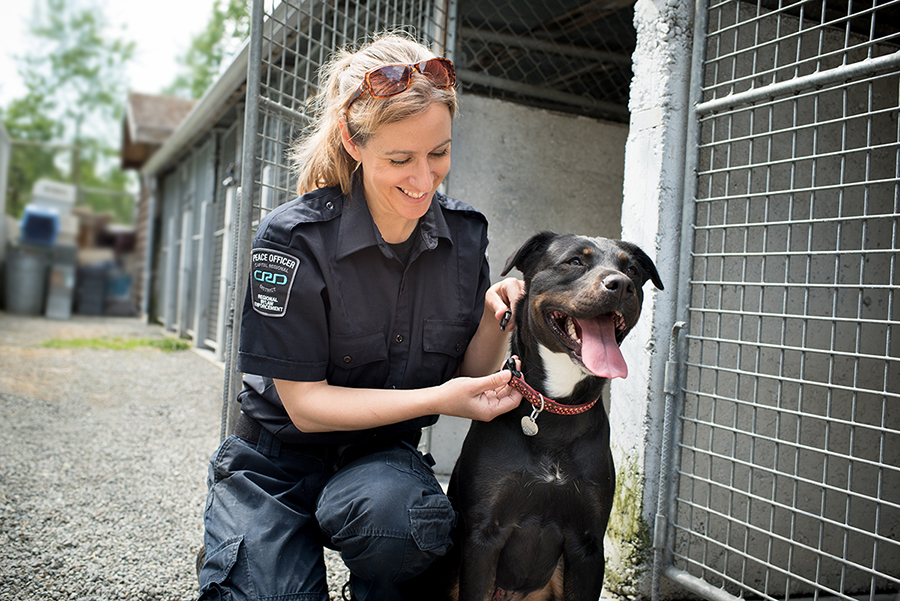 495_069_animal_rescue.jpg
