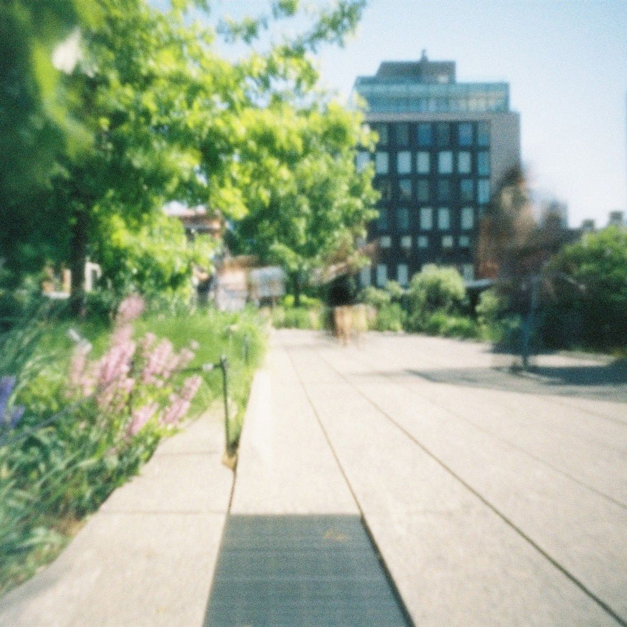 JOSH SOUTH PINHOLE CAMERA NYC HIGH LINE.jpg