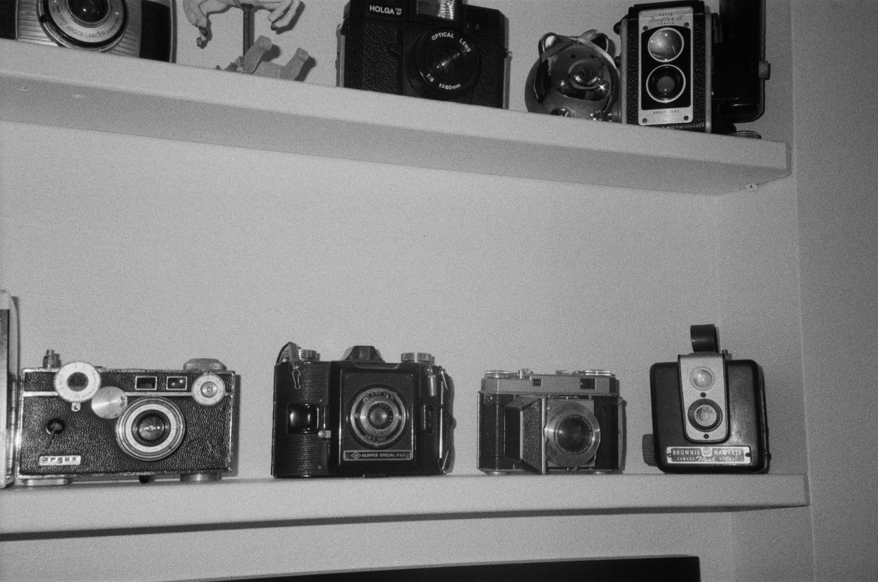 some of my cameras, fall-winter 2014, nyc