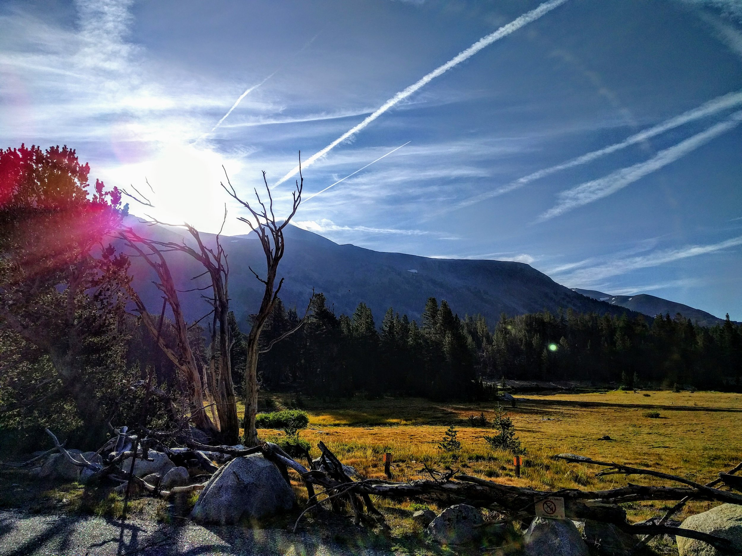 This picture is taken from a recent hike up Mt Dana, the second highest peak in Yosemite National Park, one of the most beautiful and charming places in California. To me, this picture symbolizes light and hope.