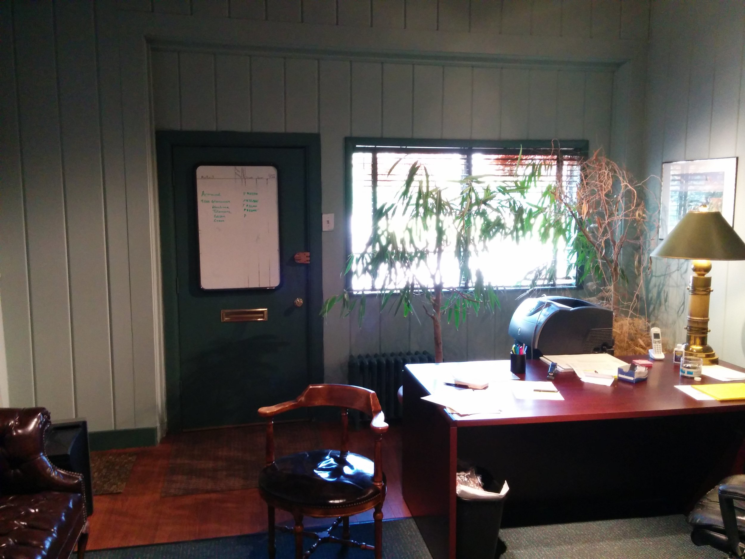 Office toward window.jpg