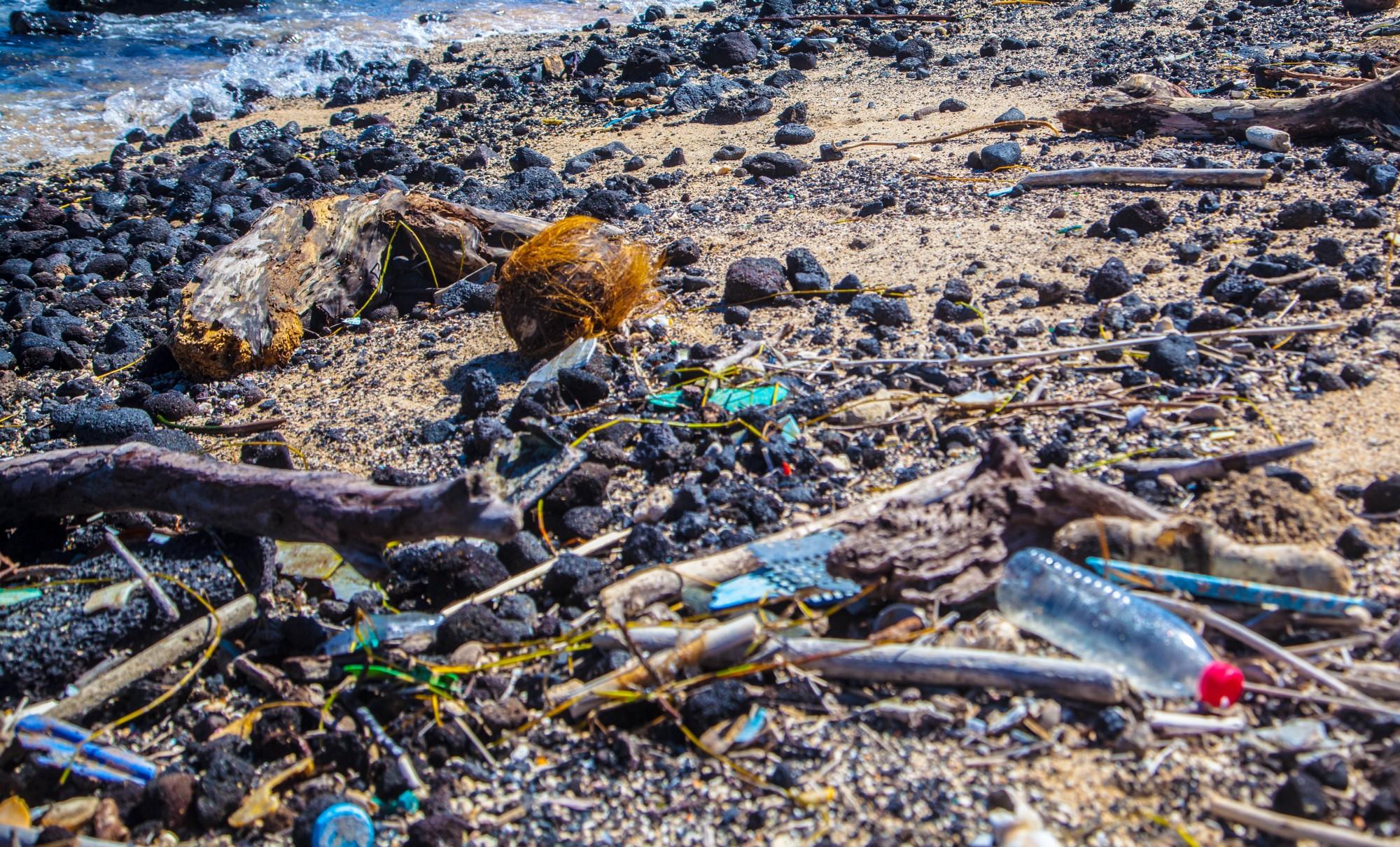 Ocean plastic waste getting you down? Bust through the Negativity Bias: Become a Problem Lover - By leyla acaroglu