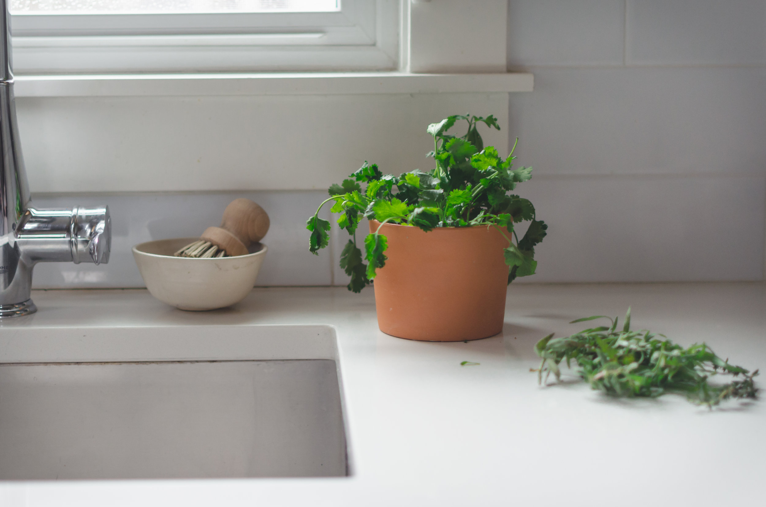 6. Grow your own herbs - Parsley, chives and cilantro are staples and growing them in at home is relatively easy! You'll save money and avoid wasting unused store-bought herbs.