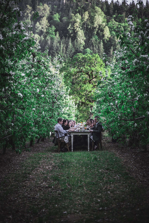 Secret Supper Flora by Eva Kosmas Flores-33.jpg