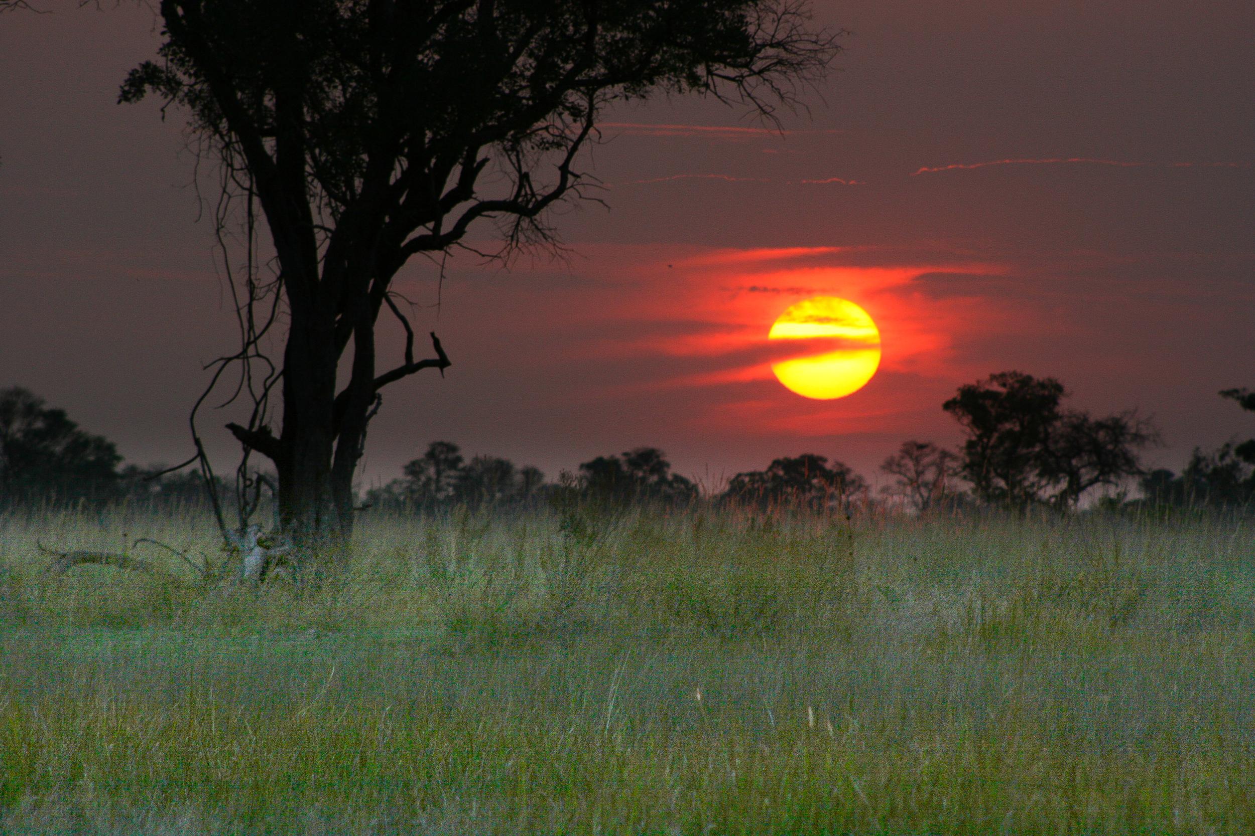Africa_Sunset.jpg