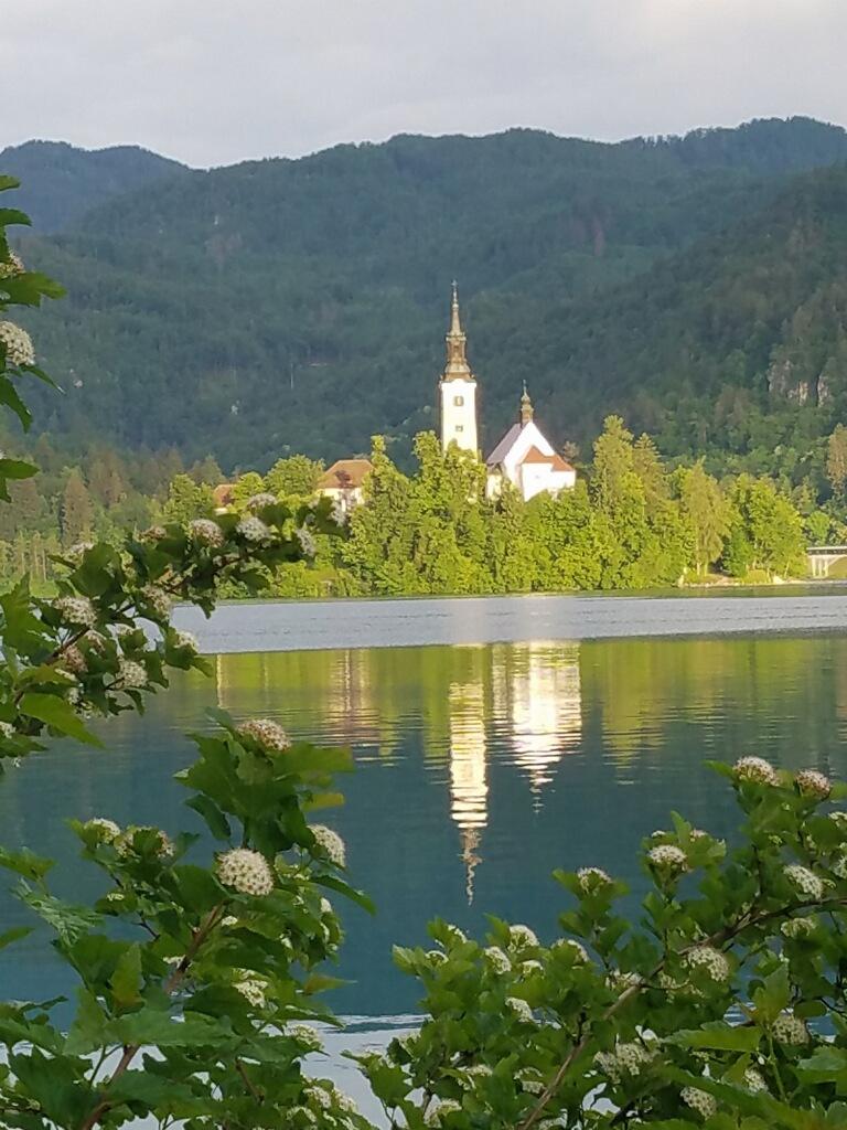 Slovenia.jpg