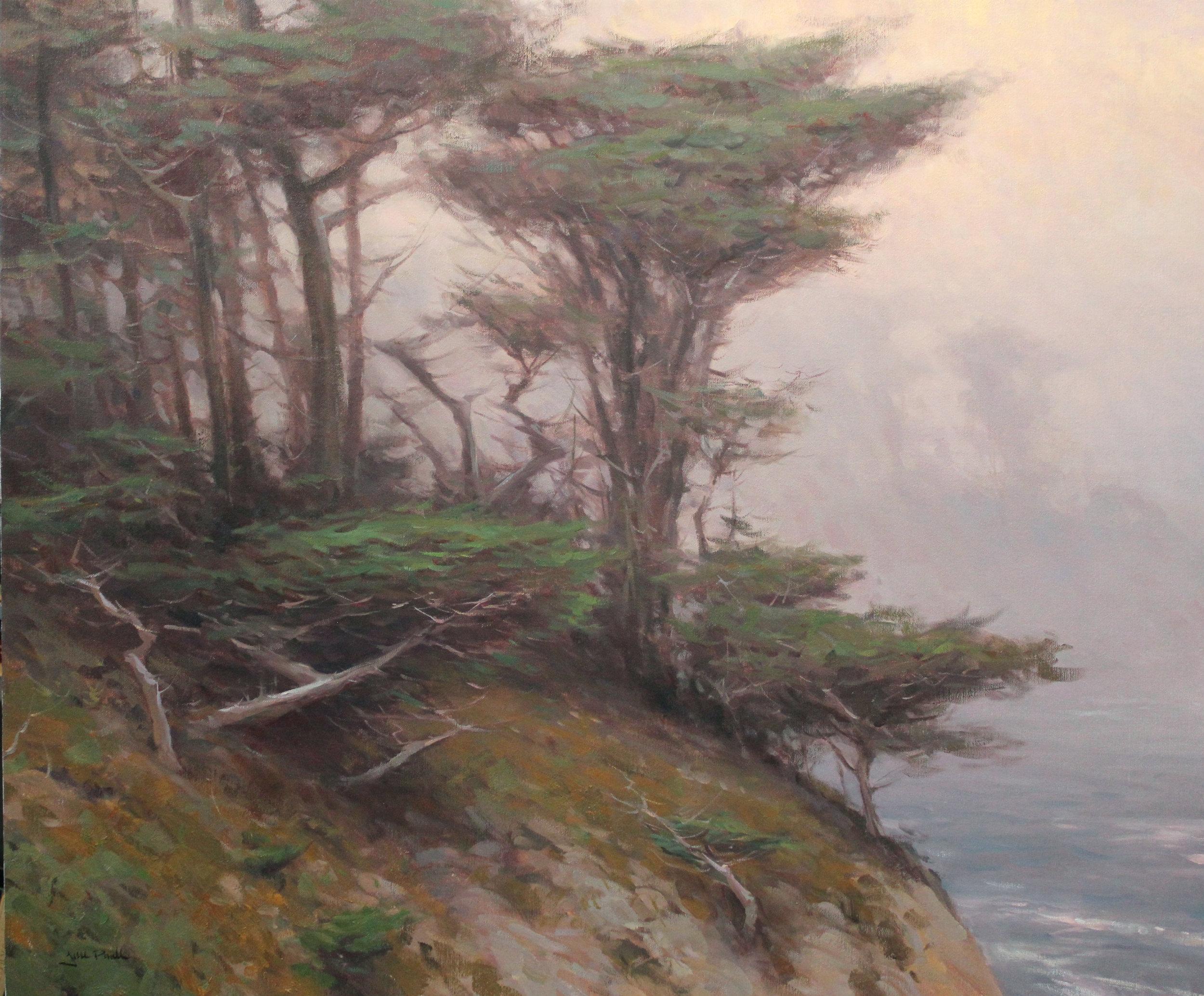cypress and fog 30x36.jpg