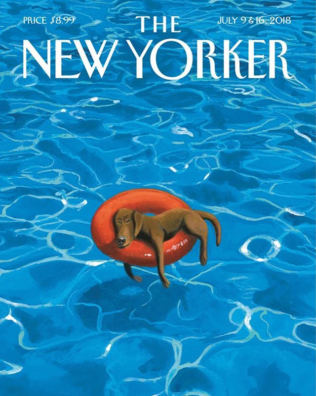 my thoughts exactly @newyorkermag | HELLO AGAIN, JULY ☀️😅