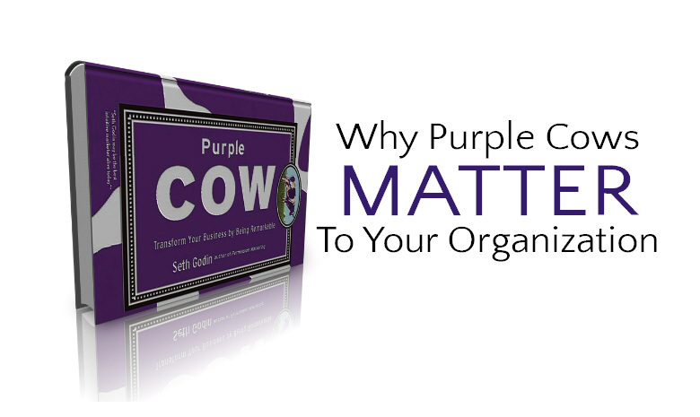 Why-Purple-Cows-Matter-To-Your-Organization.jpg