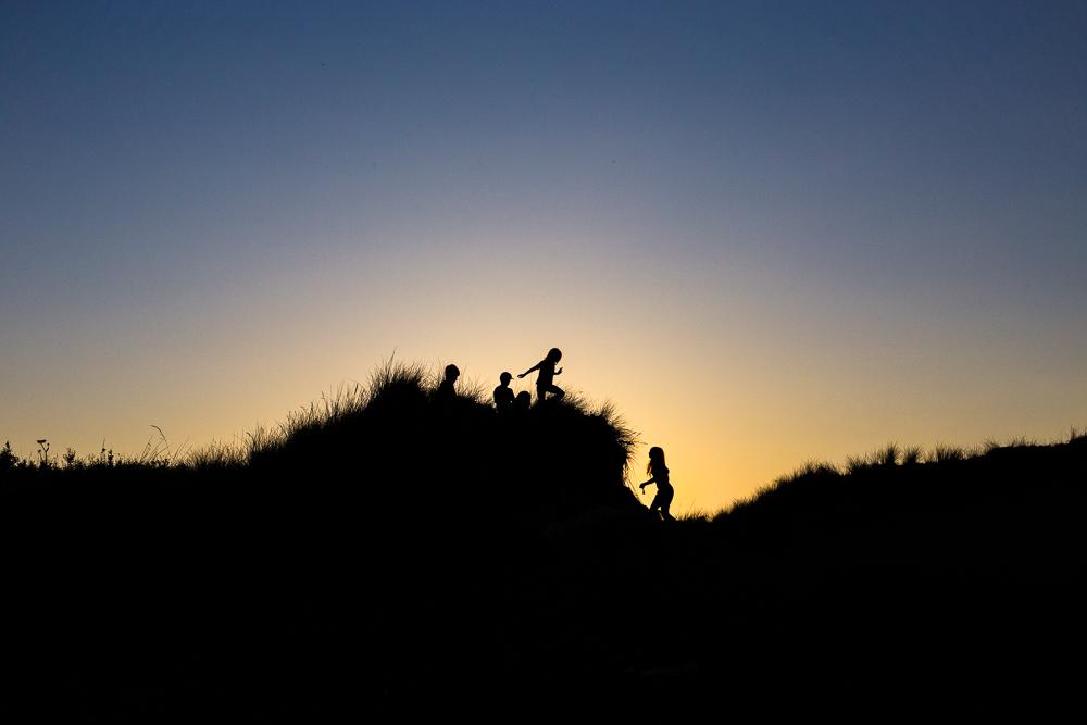 Dune Racoons