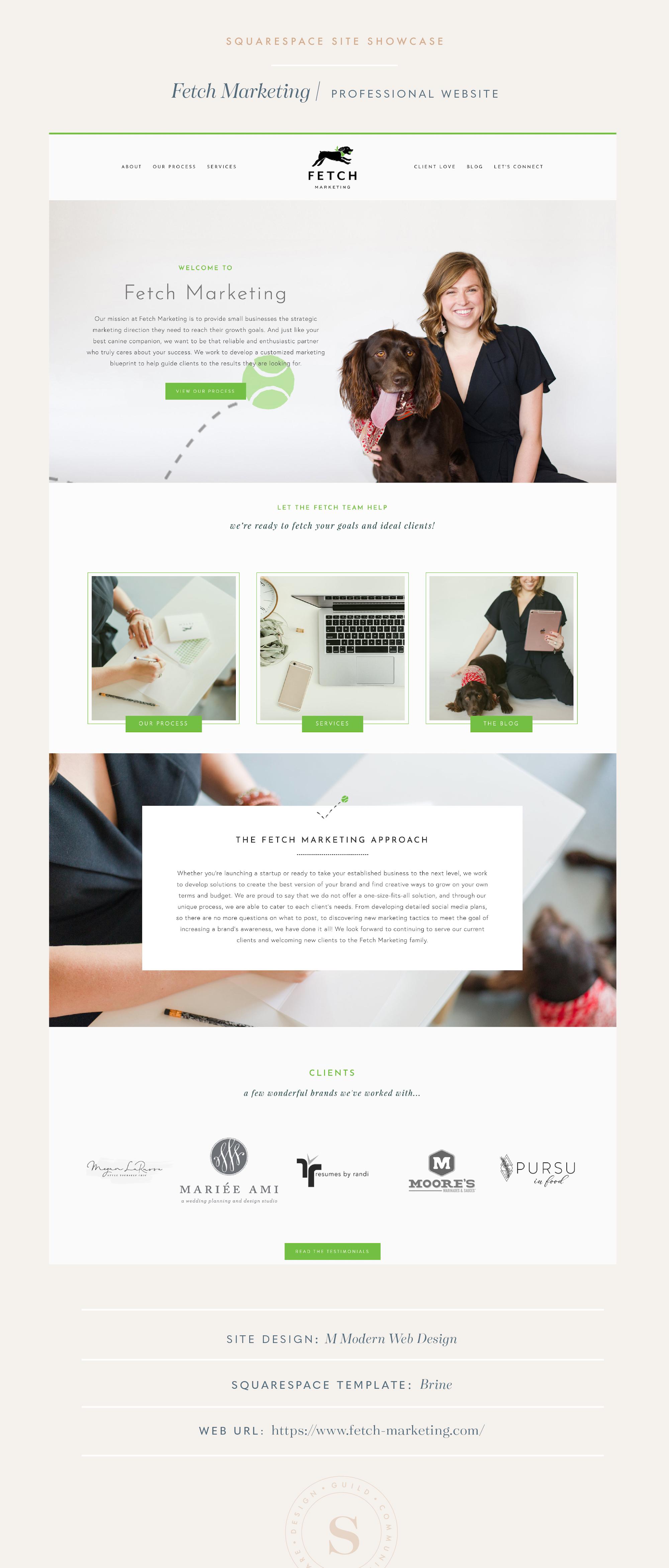 Fetch Marketing Squarespace Site Design on Brine